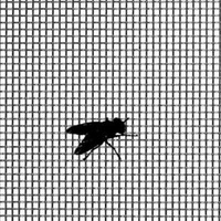 Fly Screen 565mm x 1175mm Square Bottom Corners